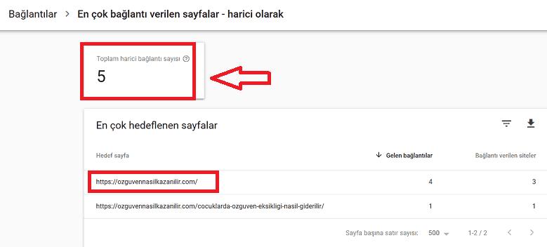 Google Search Console Backlink Analizi