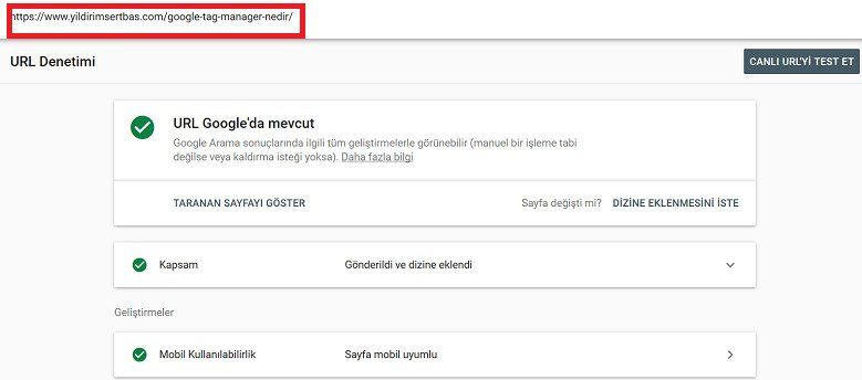 Google Search Console URL Analizi