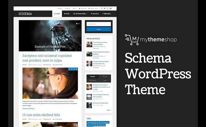 schema wordpress teması