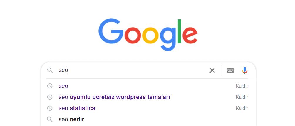 seo google araması