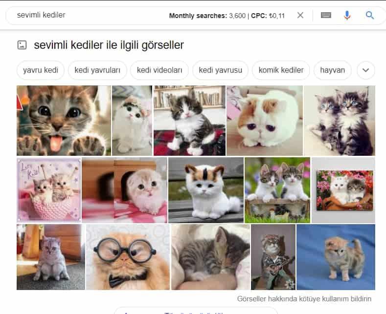 google görsel arama sonucu