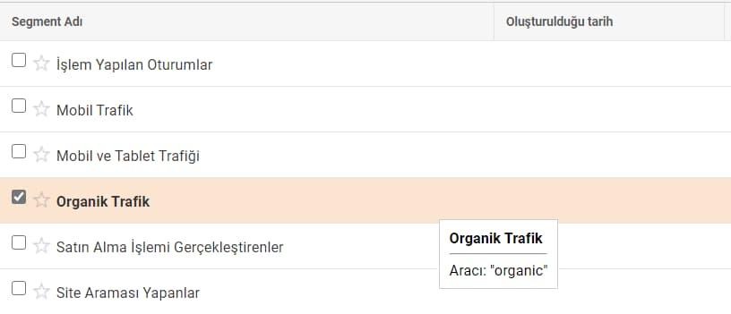 google analytics organik trafik segmenti ekleme