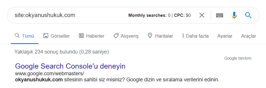 website index sayısı