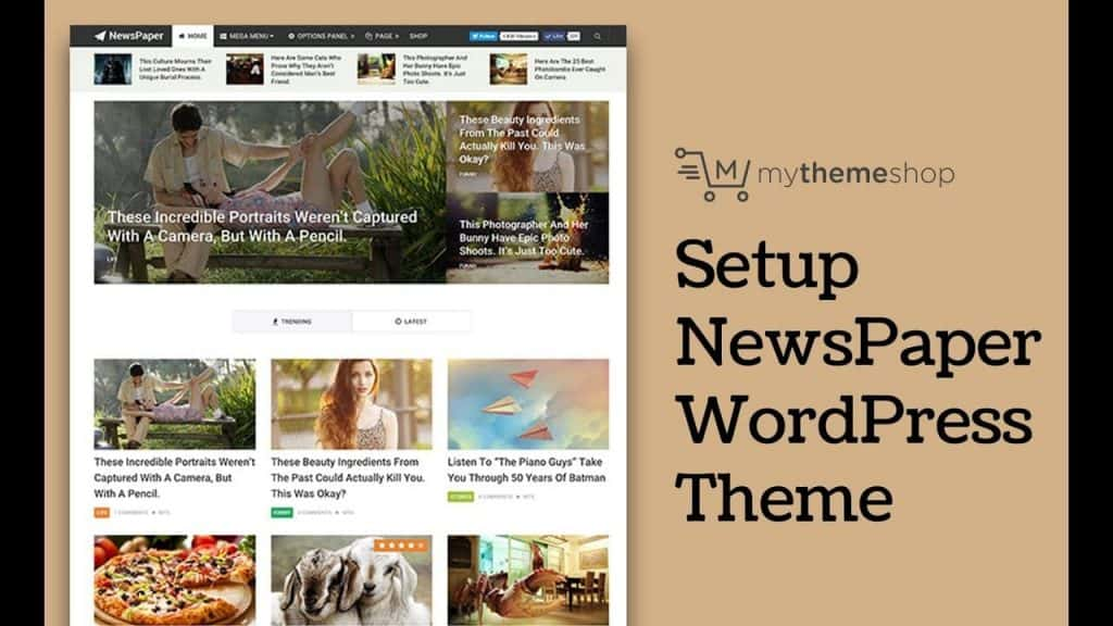 Newspaper WordPress teması