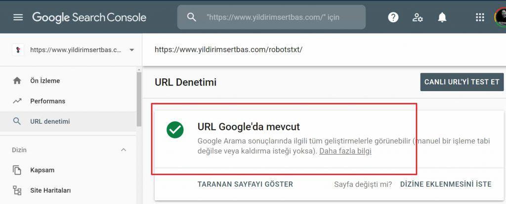 URL'in Google'daki varlığı