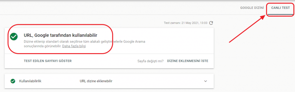 canlı URL test et